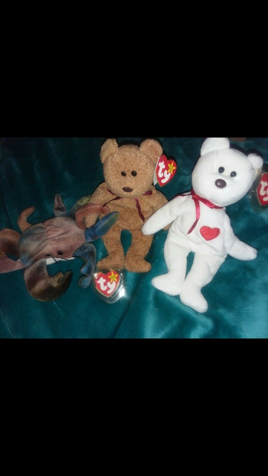 TY Beanie Babies Curly Bear Very Rare With Many Errors