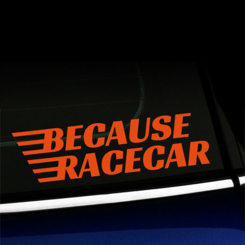 Because Racecar You choose color! Funny Fast Car Sticker Decal