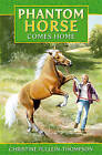 Phantom Horse by Christine Pullein-Thompson (Paperback, 2011)