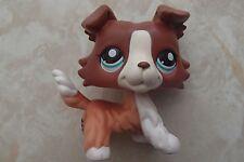 Littlest Pet Shop RARE Collie Dog Puppy #1542 Brown Red White Brigitte LeBlanc