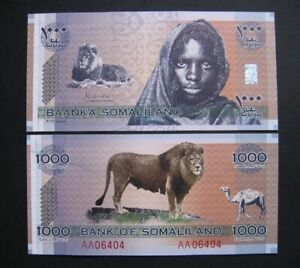 SOMALILAND 1000 Shillings, 2006, P-CS1, Lion, Commemorative, UNC World Currency