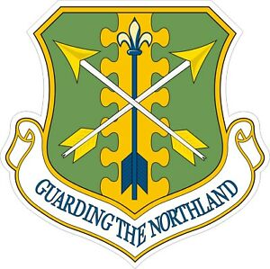 Air-National-Guard-119th-Fighter-Wing-Decal-Sticker