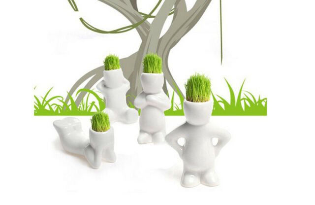 4 Shape Novel Bonsai Grass Doll Hair White Lazy Man Plant Garden DIY Mini New