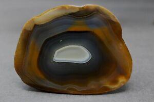 Black-River-agate-collector-specimen-AD1