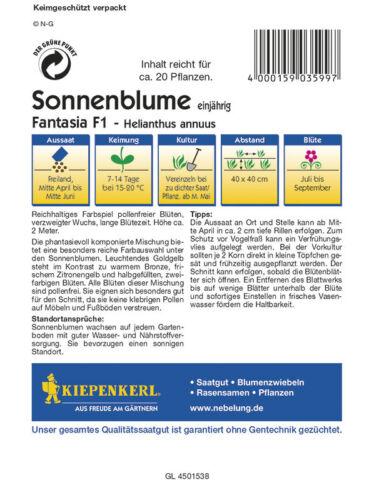 """20 Samen pollenfreie Blüten verzweigter Wuchs  ca Sonnenblume /"""" Fantasia F1"""