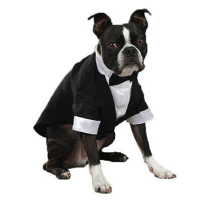 Tuxedo for Dogs, USA Seller, All Sizes, Wedding Formal Clothes, Tux Bow
