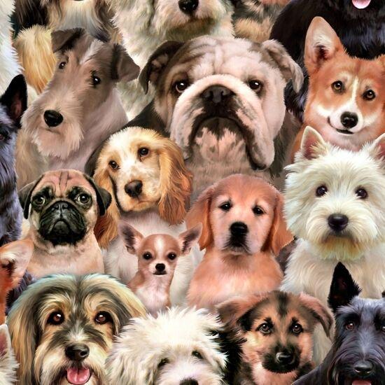 Fat Quarter Dogs Petpourri Dog Breeds Pug 100% Cotton Quilting Fabric 1255 Multi
