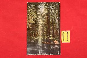 Postkarte-Ansichtskarte-Sachsen-Spreewald-Partie-im-Koenigl-Wald