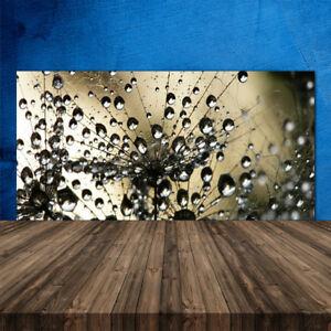 Kuchenruckwand Aus Glas Esg Spritzschutz 120x60cm Pusteblume