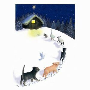 Merry-Christmas-mixed-Animals-10-pack-of-Small-Square-Cards-Dog-Pig-Cat-Sheep