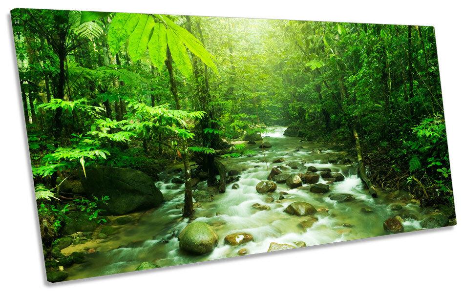 Grün Forest Landscape River PANORAMIC BOX FRAME CANVAS Kunst Bild