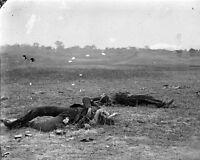8x10 Civil War Photo: Confederates Where They Fell At Antietam - Sharpsburg