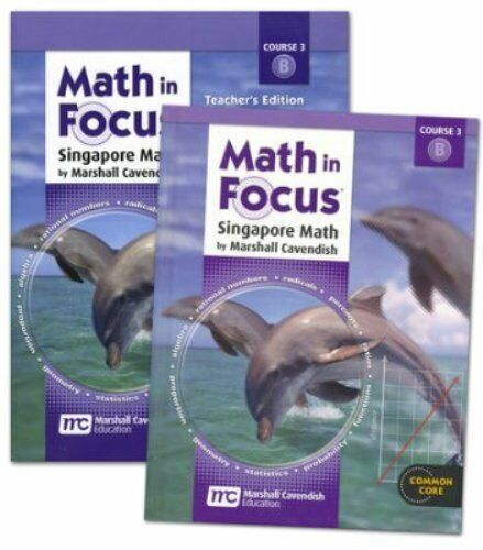 8th Grade Math In Focus Semester 2 8b Student Teacher Edition Course
