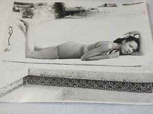 "Original Don Lewis Photo Playboy Photographer Sandra Clayton model 11x14"" sc-13"