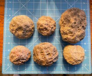 "Lot of 6 ""RATTLER"" Geodes Crystal Natural Quartz Kentucky Hollow large"