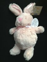 Kids Preferred Baby Pink Bunny Plush Special Delivery Lovey Stuffed Animal