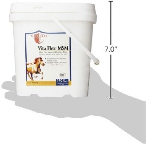192 Day Supply MSM Horse Supplement, Joints Veterinary Medicine Animal Health