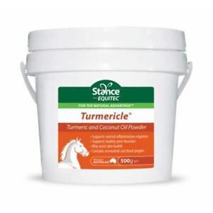 STANCE-EQUITEC-TURMERICLE-POWDER-500gr-Tumeric-amp-Coconut-Oil-powder