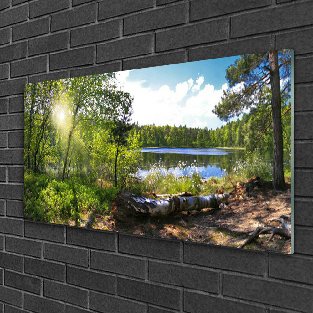 Print on Glass Wall art 100x50 Picture Image Forest Lake Nature