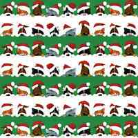 Gift Wrapping Paper Christmas Gift Wrap Roll Gift Wrap Ideas Pets 2 Rolls 8ft on sale