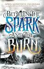 Between the Spark and the Burn by April Genevieve Tucholke (Hardback, 2014)
