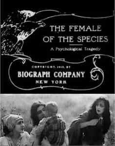 THE FEMALE OF THE SPECIES  STD 8MM 200FT CINE FILM B/W SILENT BLACKHAWK BIOGRAPH