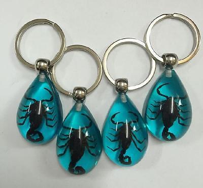 12 pcs insect keychain specimen black scorpion blue drop key ring NG