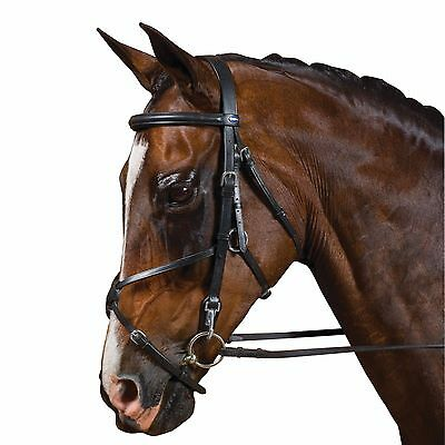 COB//MEDIUM, BLACK MEXICAN GRACKLE ANATOMICAL LEATHER JUMPING BRIDLE SHOW STITCHING BLACK BROWN FULL /& COB