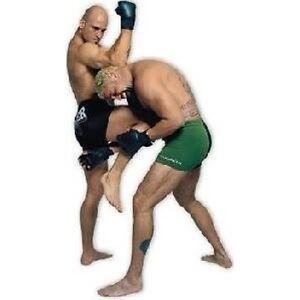 NEW-Bas-Rutten-Extreme-Pancrase-MMA-DVD-039-s-Choose-Vol-1-2-5-6-7-8-9-UFC