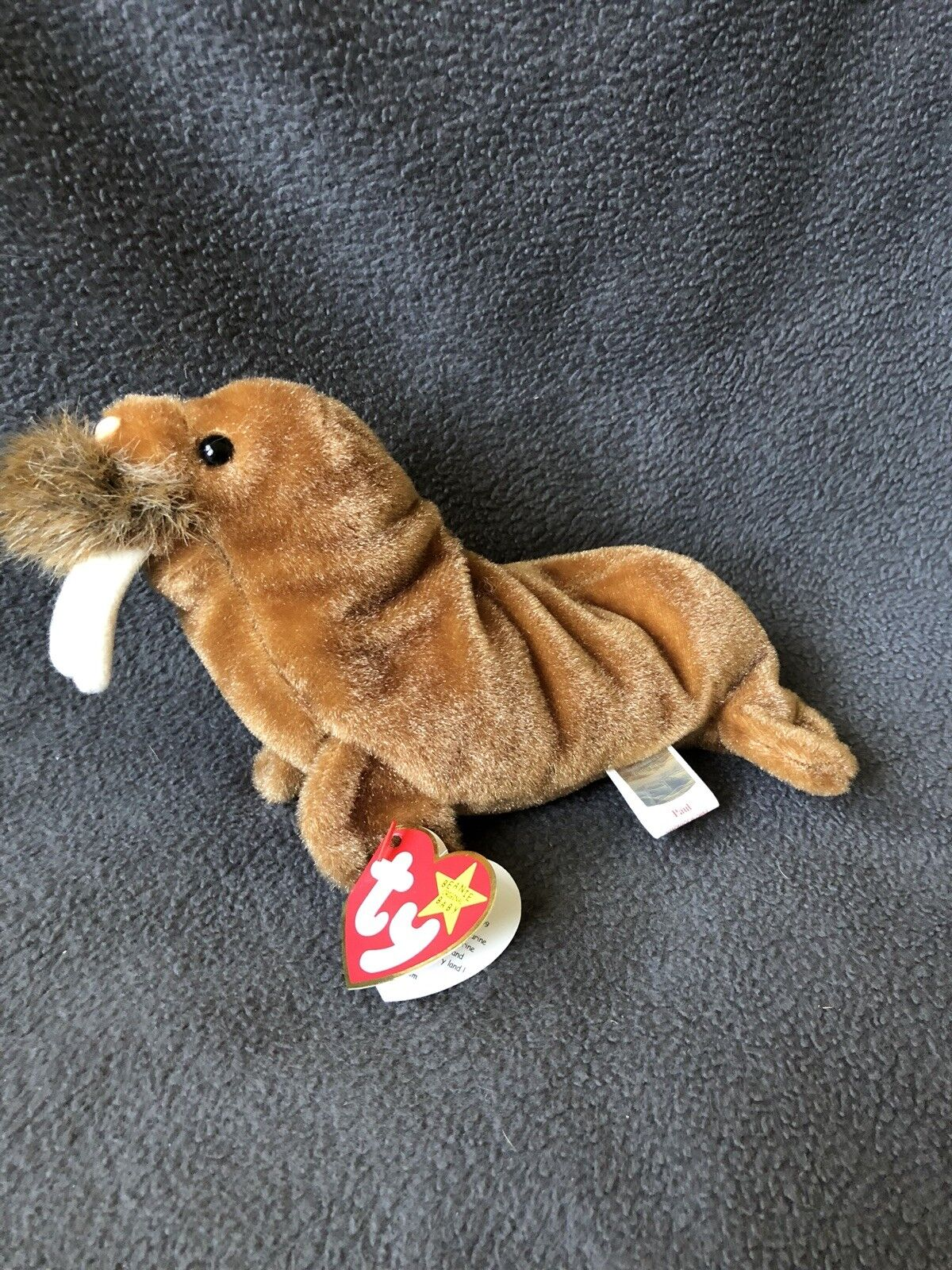 Beanie Baby Paul The Walrus