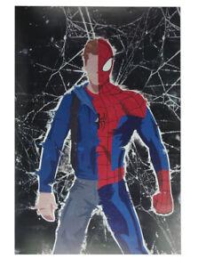 Spiderman Alter