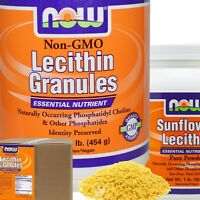 Now Foods Lecithin All Sizes - Select Option