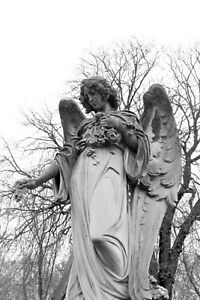 Angel-Tombstone-Statue-Paris-France-Cemetery-BW-Matte-12-034-x-18-034-Free-Shipping