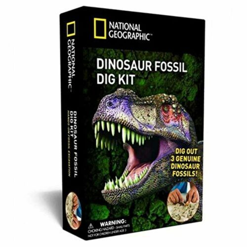 3 fossil dinosaur to extra Bandai-national geographic-excavation kit