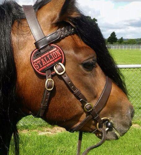 1 x 7 cm tweed Overlay Stallion Disc Italique police Olive /& terre cuite