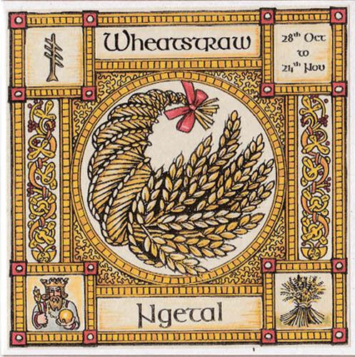 24 nov celtic pagan anniversaire wiccan Wheatstraw Carte de vœux Tree 28 oct