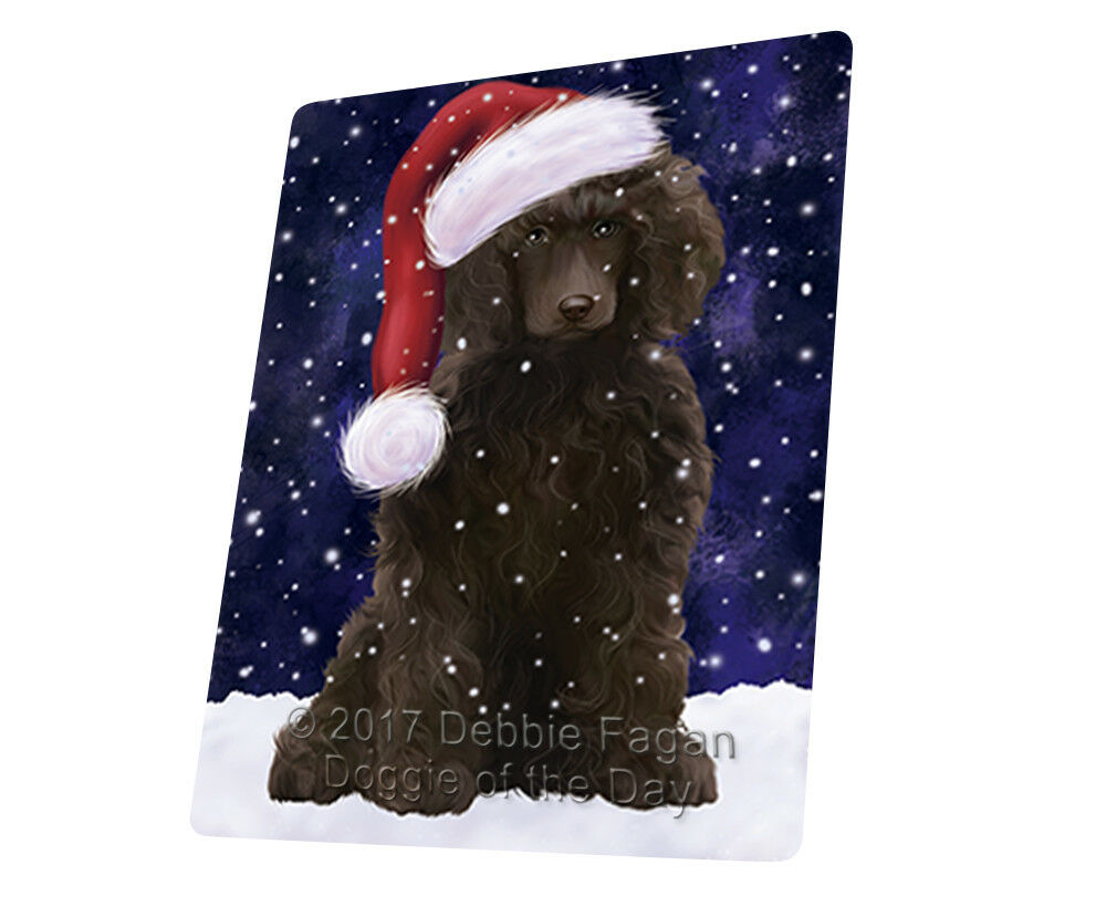 Let it Snow Christmas Holiday Poodle Hund Woven Throw Sherpa Blanket T20