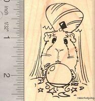 Guinea Pig With Crystal Ball, Fortune Teller, Magic J16304 Wm Halloween Costume