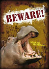 Pocket Worlds Non-Fiction Year 3: Beware! by Pearson Education Limited (Paperback, 2008)