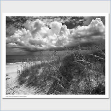 Another Glorious Day by Eve Turek B&W Beach Photo Art Print Poster