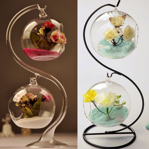 S Type Hanging Glass Ball Flower Vase Micro Landscape Terrarium Home Plant