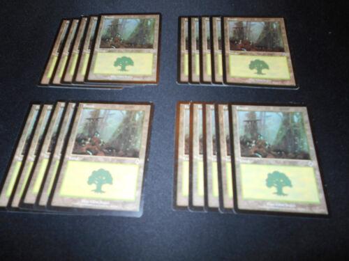 SAME ART MP-NM Magic MTG FTG 20 Basic Land #350 Forest Invasion