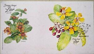 Malaysia FDC with Miniature Sheet (09.07.2020) - Wild Flowers Series III