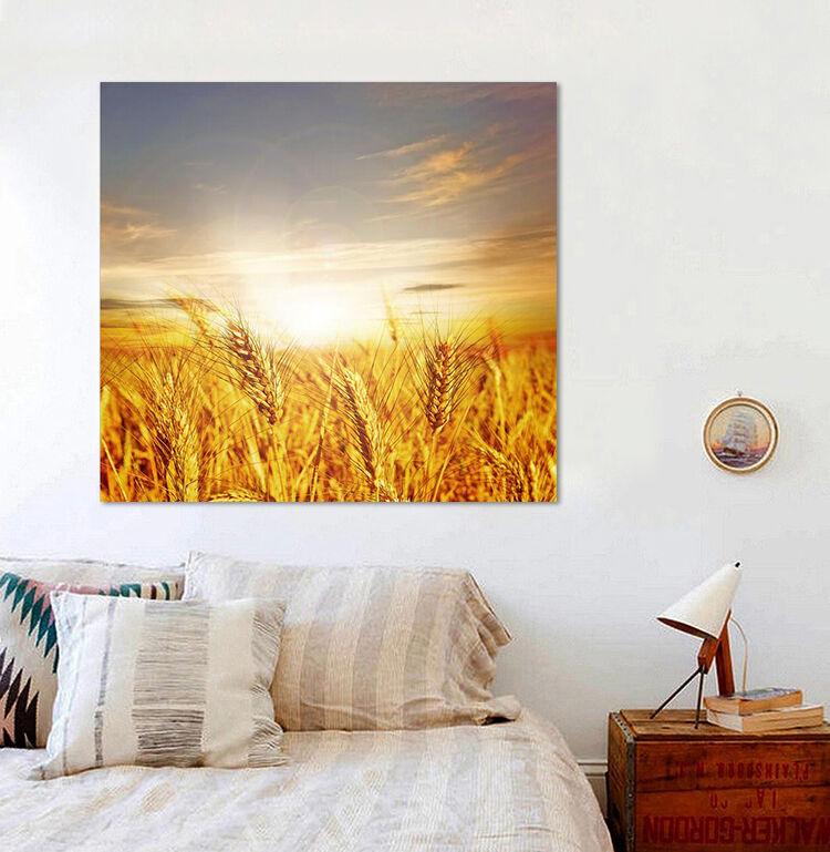 3D Golden Weizenfeld 33 Fototapeten Wandbild BildTapete Familie AJSTORE DE