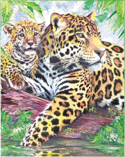 Malen mit Buntstiften Jaguar mit Jungem Komplettset Größe 12 cm x 18 cm