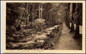 WILDBAD-1910-20-Baeume-Bach-Enz-Anlagen-Loebich-Verlag