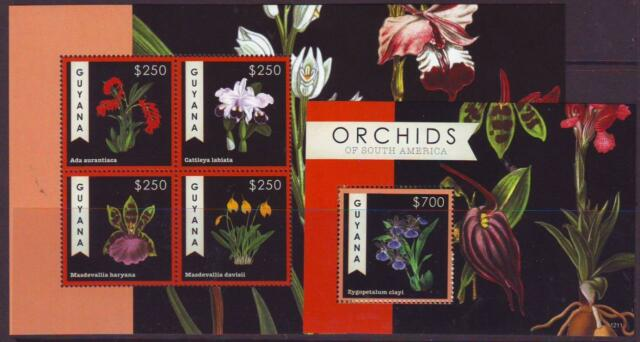 GUYANA 2012 ORCHIDS OF SOUTH AMERICA SHEETLET 4 + MINISHEET MINT NEVERHINGED