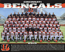 2014 CINCINNATI BENGALS FOOTBALL 8X10 TEAM PHOTO PICTURE