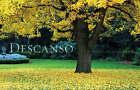 Descanso: An Urban Oasis Revealed by Warren Marr, David Brown (Hardback, 2007)