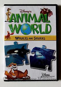 Disney-039-s-Animal-World-Whales-and-Sharks-Disney-Nature-Children-039-s-Educational-DVD